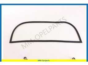 Rubber seal rear window with flute for trim, Saloon